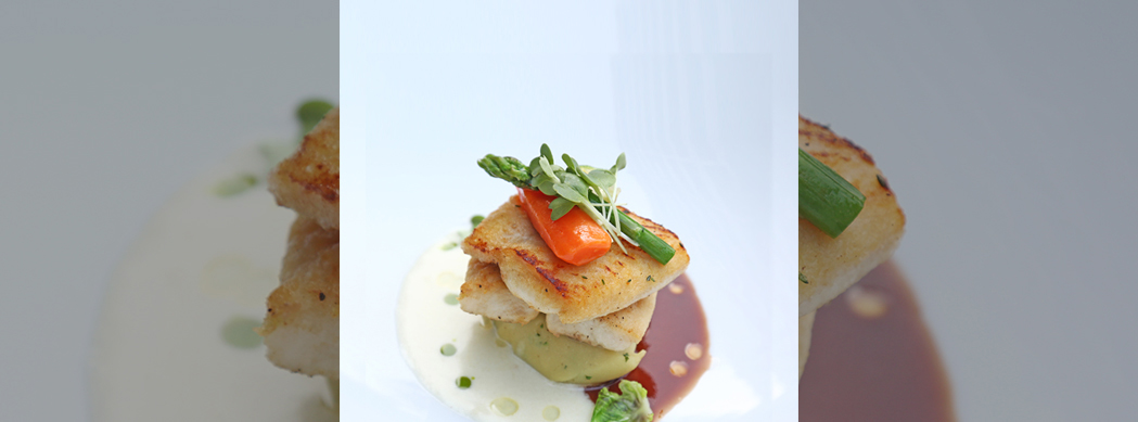 John Dory with Red wine sauce and Martini Veloute